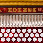 Hohner-GCF Button Accordion