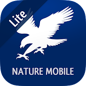 iKnow Birds 2 LITE - USA CA MX