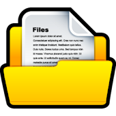 Wireless File Manager