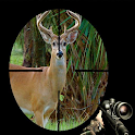 Deer Hunting game icon