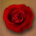 Wild Flowers Live Wallpaper logo