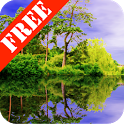 Forest Pond Free icon