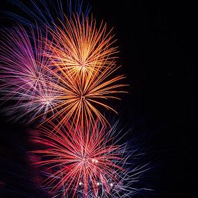 Fireworks (1 of 1).jpg
