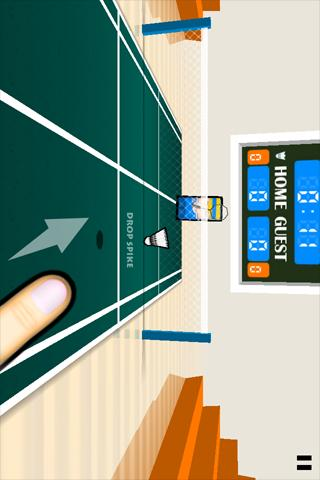 3D Badminton- screenshot