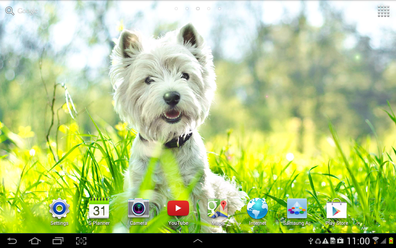 Dogs Wallpaper dogs wallpaper - android apps on google play