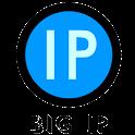 BigIP 灌票幫手(專業版) icon