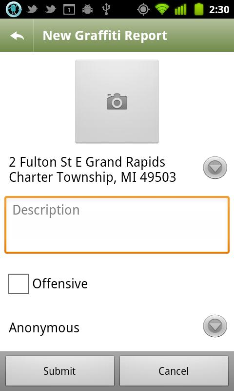 Grand Rapids 311- screenshot