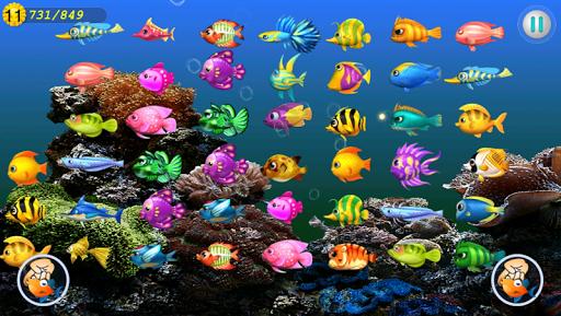 玩免費休閒APP 下載魚のマスター app不用錢 硬是要APP