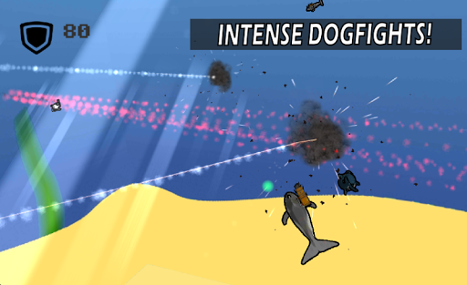 Dolphin Warriors: Simulator