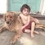 A Boy and His Dog by Emily Rhinehart - Babies & Children Toddlers ( man's best friend, dog, toddler, boy, golden retriever )