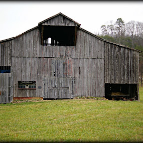 Al's Barn by Larry Landry - Buildings & Architecture Other Interior ( farms, pigeon forge, country living, tennessee, barns )