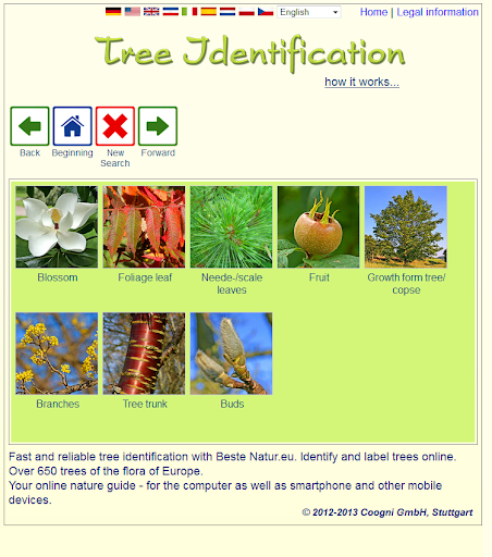 免費下載教育APP|Tree identification app開箱文|APP開箱王