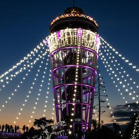 Enoshima by Lenny Sharp - Public Holidays Christmas
