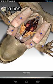 Froguts Frog Dissection Screenshot 13