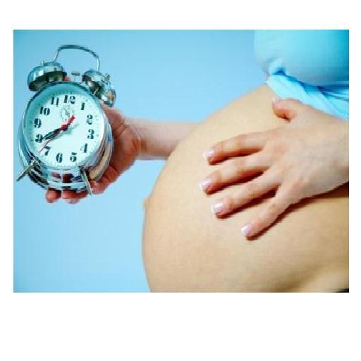 Справочник беременности LOGO-APP點子