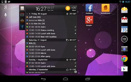 All-in-One Agenda widget Screenshot 16