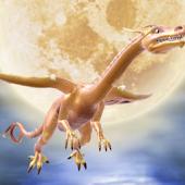 Dragon Moonlit