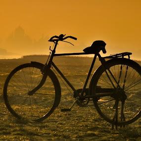 Bicycle In Taj... by Nimit Nigam - City,  Street & Park  Street Scenes ( d3000, taj, mahal, indian, nimit, india, nikon, bicycle, Bicycle, Sport, Transportation, Cycle, Bike, ResourceMagazine, Outdoors, Exercise, Two Wheels )