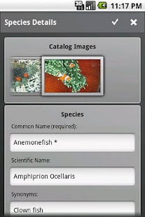 Fishes - screenshot thumbnail
