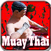 Best Muay Thai Knockouts