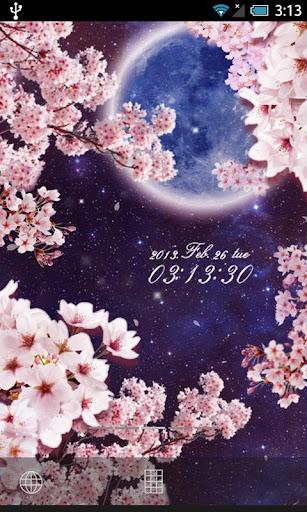 月桜ライブ壁紙
