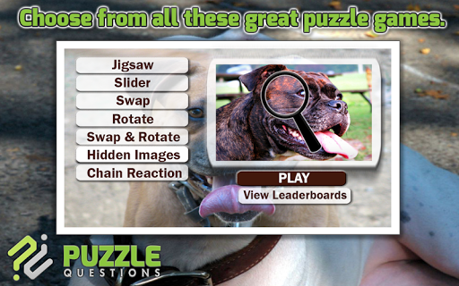 Pitbull Dog Puzzle Games