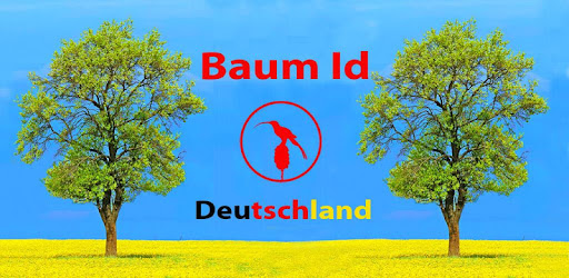 baum id deutschlands b ume apps bei google play. Black Bedroom Furniture Sets. Home Design Ideas