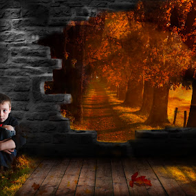 Fall boy by Antoinette Struwig - Digital Art People ( portraiture, red, brick, fall, yellow, leaves, boy,  )