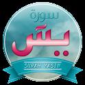 Surah Yasin Audio Pro icon
