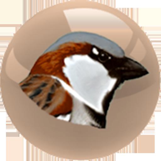 Guess the bird? 街機 App LOGO-APP試玩