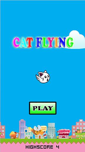 Cat Flying