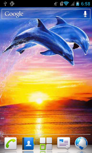 Frozen Dolphins Live