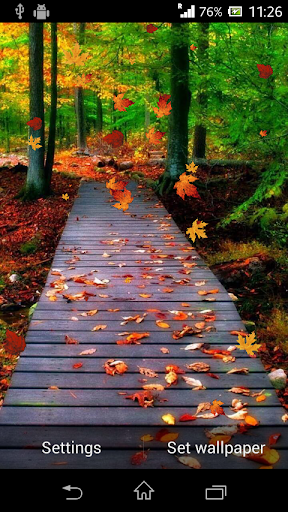 【免費個人化App】Autumn Live Wallpaper-APP點子