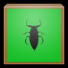 Insect Sound FX Lite icon