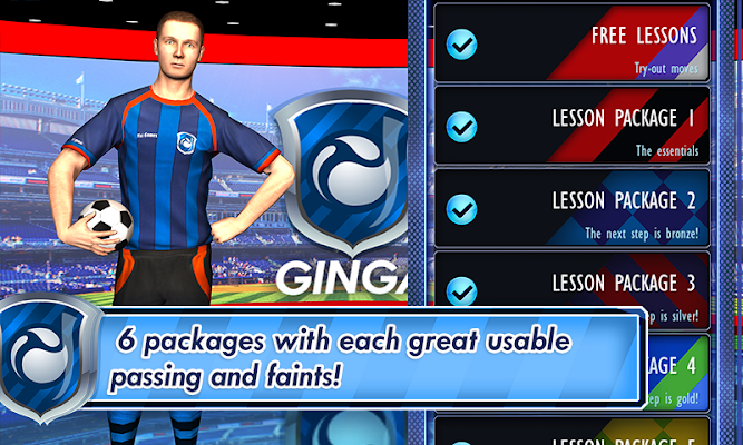 Ginga Football Trainer - screenshot