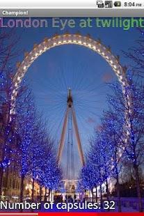 Top 10 Ferris Wheels 2 FREE- screenshot thumbnail