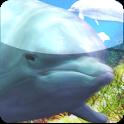 dolphin video ringtone icon