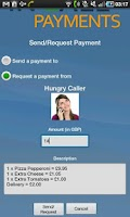 Screenshot of In Call Payments