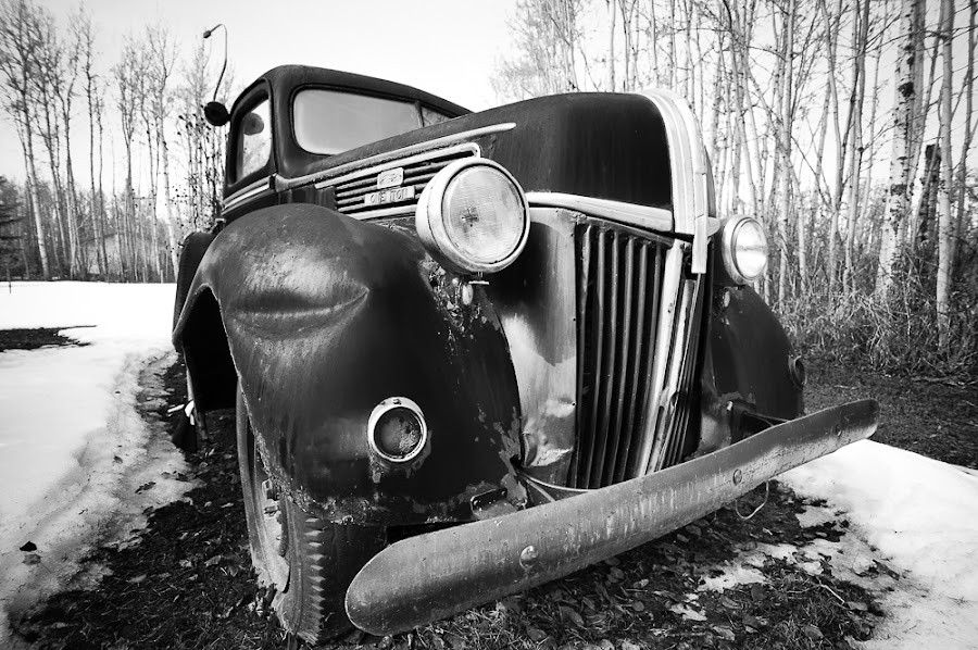1941 Ford One Ton by Doug Barrett - Transportation Automobiles