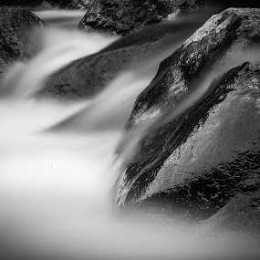 Big Thompson River Black and White by David Andrus - Black & White Landscapes ( estes park, drake, colorado, big thompson river, big thompson canyon )