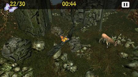 Butterflies Catch Craze 3D 1.0 screenshot 6192