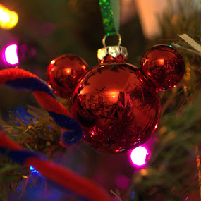 by Terry Hairston - Public Holidays Christmas ( mickey mouse, decoration, christmas, christmas tree, disney,  )