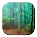 Forest Live Wallpaper 3D icon